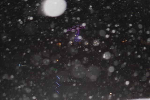 雪の豊洲 2011