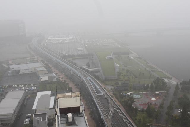 豊洲の豪雨