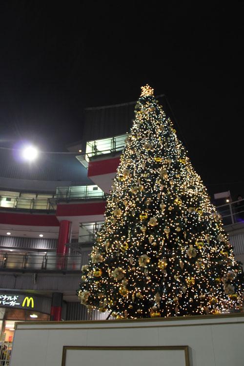 ヴィーナスフォートのクリスマスツリー2009