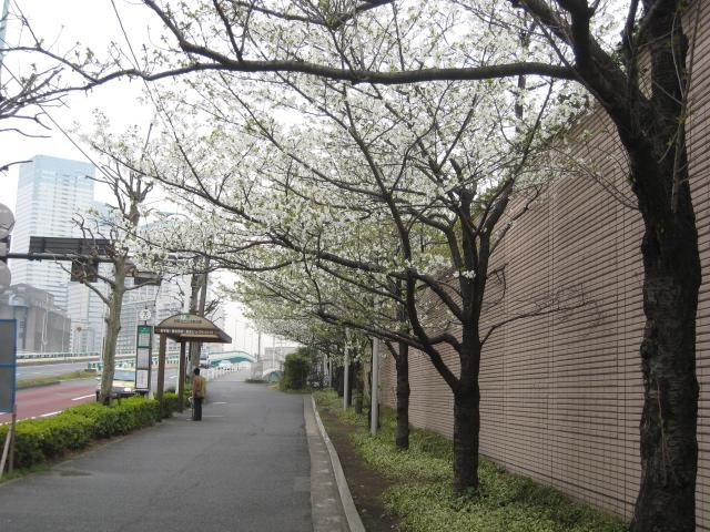 Photo_544